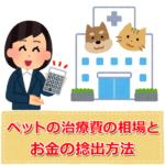 ペット(犬・猫)の治療費の相場|お金の捻出方法は?保険ってどう?