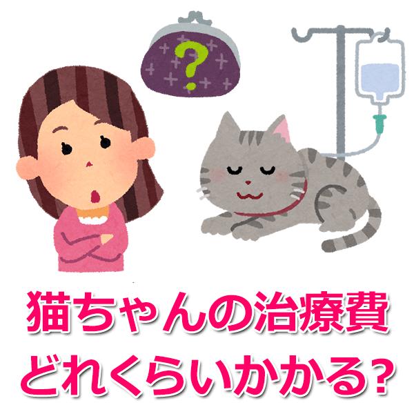 猫にかかる治療費と相場