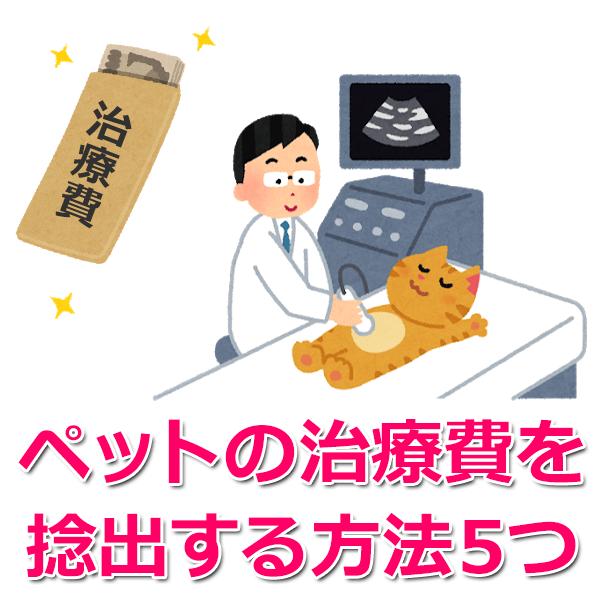 ペット手術費の捻出方法5つ